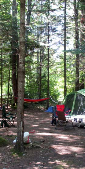 Tentsite with Hammock